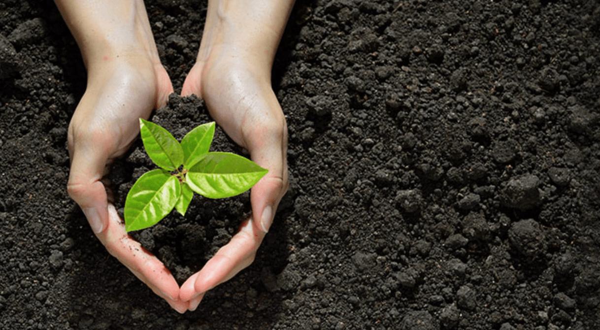 Κ. Σκρέκας: Συντάσσουμε ήδη το νέο εθνικό κλιματικό νόμο
