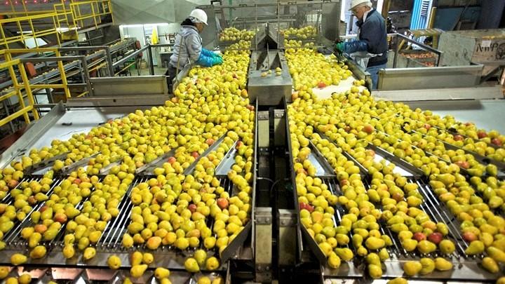 Εξαγωγές: Σημαντική αύξηση 18,7% το 8άμηνο, στο +18,1% το έλλειμμα εμπορικού ισοζυγίου