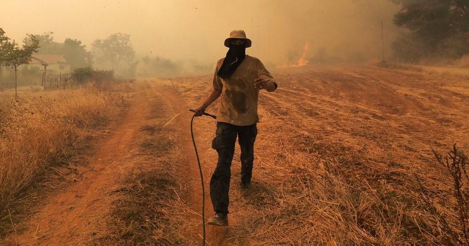 Δημοσιεύθηκε η ΚΥΑ για τις αγροτικές αποζημιώσεις πυρόπληκτων