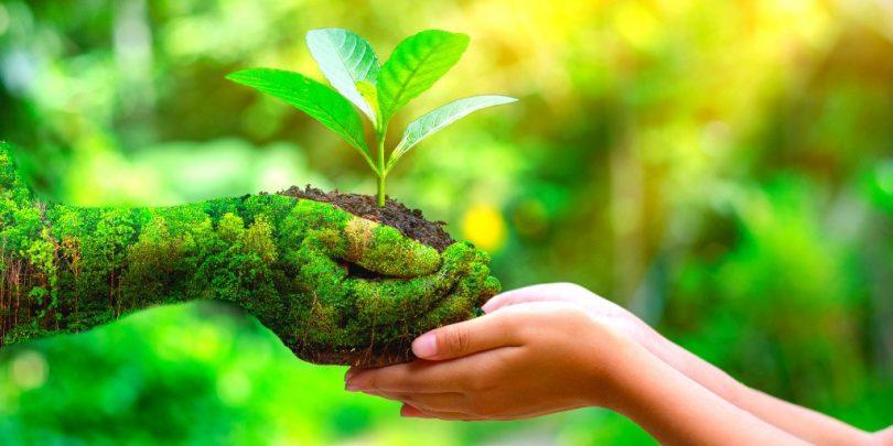 Κέντρο Ικανοτήτων Φυσικών Προϊόντων συν Αθηνά…